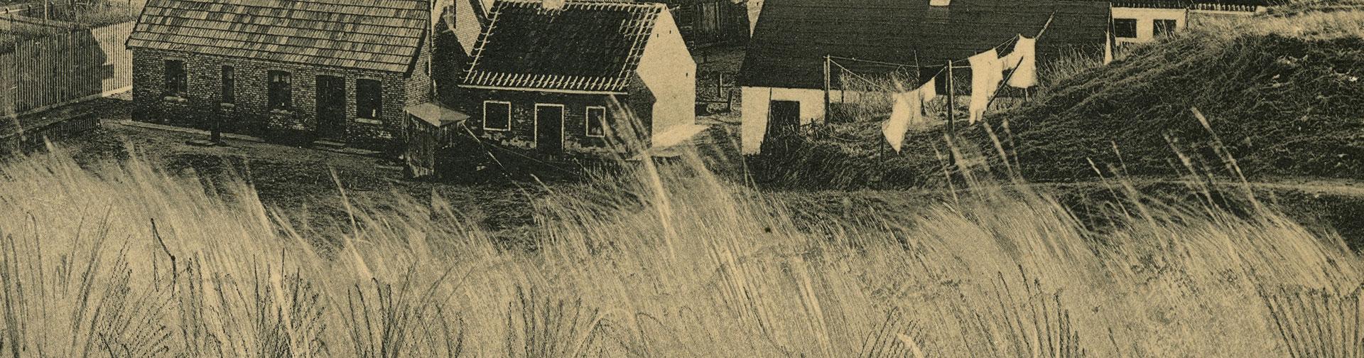 panorama_del4.jpg